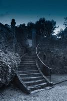 Escalier by Flore-stock