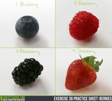 Exercise 36 -Berries by Sh3ikha