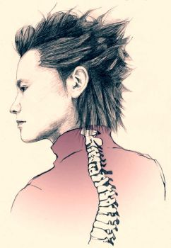 Spine by kurarisa