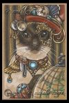 ZsaZsa The SteamPunk Cat by natamon