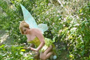 tinkerbell by narutine