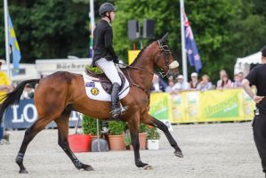 3DE Show Jumping Phase Bitless Stock 41 by LuDa-Stock