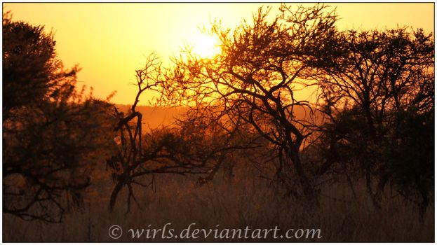 Pilanesberg Sunset by Wirls
