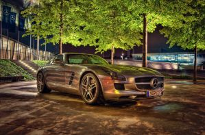 Mercedes SLS HDR by rayxearl