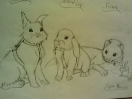 Lil' Pets by EpicCatLover