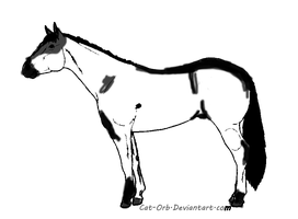 Quarter Horse , white and black- adopt 4 points by whenwolveshowl
