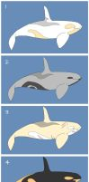 Orca - Adoptables #4 (CLOSED) by Ask-PhillisTheOrca