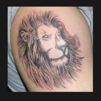 lion head by JesseDelRio