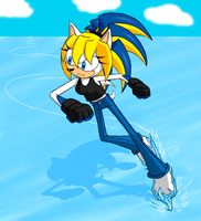 Ice Skating Hedgehog by ShadOBabe