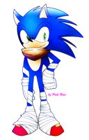Sonic the hedgehog (Sonic boom) by PinkRose2001