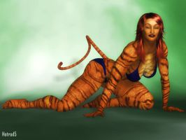 Tigra by hotrod5