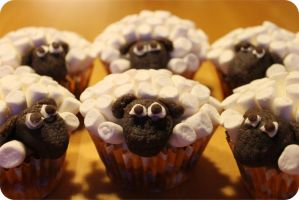 Sheepcupcakes by NellyL