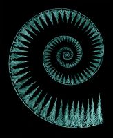 Pine Tree Spiral by offermoord