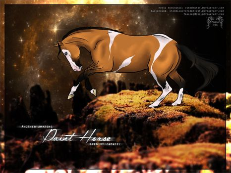 HP - Paint Horse by fillyrox
