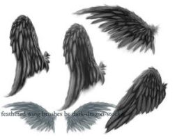 Wings 2 by dark-dragon-stock by Stock-Resource-Club