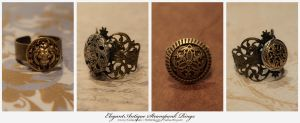 Steampunk Rings : 02 by taeliac