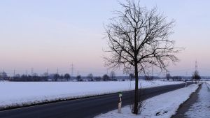 Winter Breeze by Zuggamasta