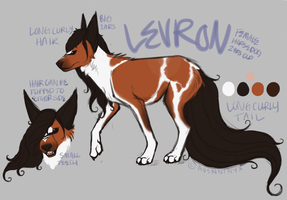 levron reference sheet by JHiDAA