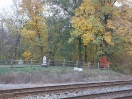 Michigan Fall Photo 2 by SupernaturalSpirit15