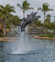STOCK - Seaworld 2013-81 by fillyrox