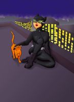 Catwoman2 by Xgirl1251