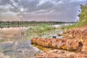 Dead river (Euphrates) !! by musi1