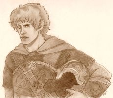 Meriadoc, Knight of the Riddermark by iamfergie