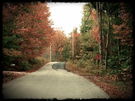 autumn Maine road by sataikasia