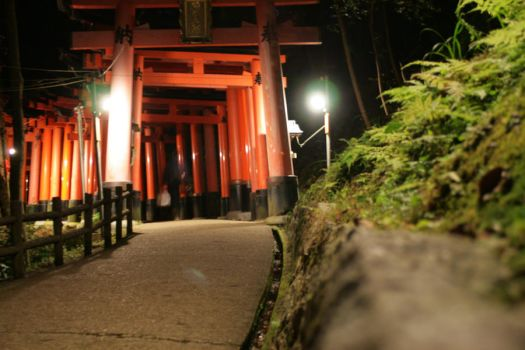 Fushimi Inari Shrine at Night by AshleyLegit