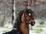 Snow? Did you see? by Starblas