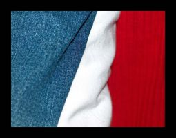 French flag? by Tamin
