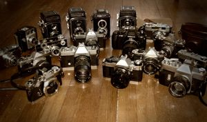 Photohunt: Collection by copperrein