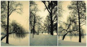 winter snapshots by Iulian-dA-gallery