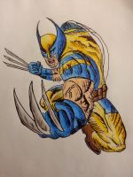 Wolverine by apocalitico