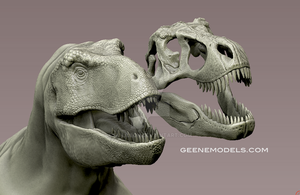 Tyrannosaurus and skull by GalileoN