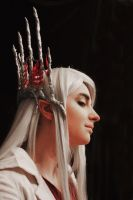 Thranduil Mirkwood cosplay [4] by the-ALEF