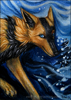 ACEO Blizzard by Endlen