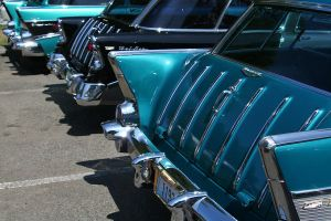 Fins are Fifty by indigohippie