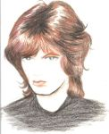 Portrait Sketch of Mick Jagger by OGallerie