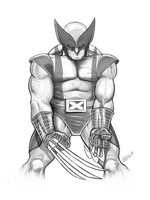 Wolverine FLAT B and W by soonergriff