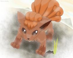 Vulpix - Mountain Dweller by roddz-art