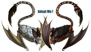 Bat Adopts ~ OPEN - OFFER TO ADOPT. by Myoubi-Rion