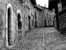 cobbled street Perouges France by jynto