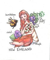 Fairies of the US- New England by Deisi