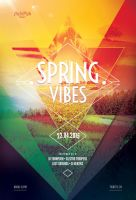 Spring Vibes Flyer by styleWish