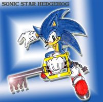 RQ SONIC STAR HEDGEHOG by Crysalia777