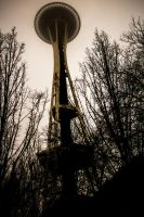 Space Needle by lukederic