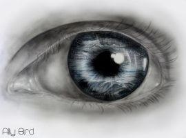 Behind Blue Eyes by AllyBird