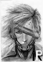 Raiden by ilya233