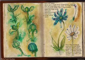 Peacock Weed::field studie by BonePileStudio
